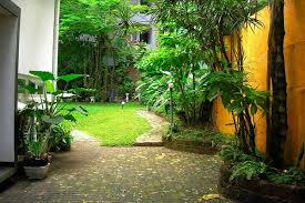 Small Picture House of Green How a Garden Progresses sellamuttu 1 5 Garden