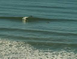 Tide Chart Carlsbad Ca Surf Spots In Carlsbad Oceanside Encinitas Beachfront