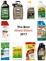 Weed Killer Mixing Chart 10 Best Weed Killers Dec 2019 Buyers Guide And Reviews
