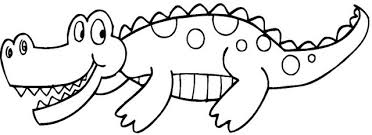 Small Picture ALLIGATOR COLORING PAGES