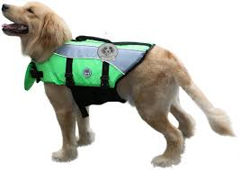 Vivaglory Size Chart Vivaglory Dog Life Jackets With Extra Padding For Dogs
