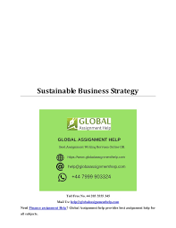 sustainable business strategy sample by global assignment help