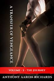 A Transfer of Vengeance Volume 2 by Anthony Aaron Richards   NOOK Book  (eBook)   Barnes & Noble®