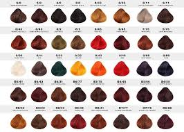 16 Interpretive Redken Hair Toner Color Chart