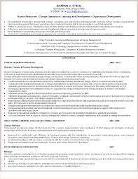 Unusual Rewrite Resume Photos Professional Resume Example Ideas