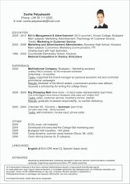 fast food manager resume advertising manager resume