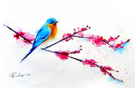 bluebird sitting on cherry blossom branch watermark cherry blossoms for you watercolor painting