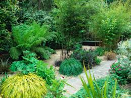 Small Picture Garden Design With Bamboo and Ornamental Grasses HGTV