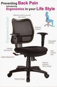 ergonomic office chair for low back pain. stylish ergonomic chair for lower back pain chairs choosing the best office low i