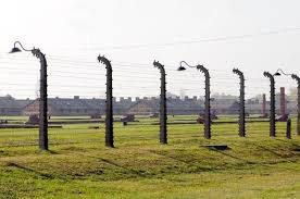 barbed wire fence concentration camp. Interesting Concentration Poles And Barbed Wire Fence Surrounding Auschwitz Concentration Camp Poland  With Barracks In Background Built By And Barbed Wire Fence Concentration Camp I