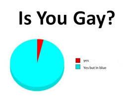 Pie Chart Meme Pie Chart Meme Tumblr