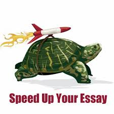 check out the essay sites plagiarism typepad prof editing a research paper