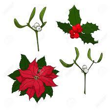 Poinsettia Designs Four Vector Christmas Elements For Your Designs Poinsettia