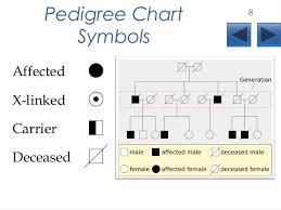 Pedigrees Lecture