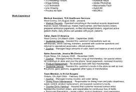 Lead Teller Resume Examples Resume Teller Resume Perfect Bank Teller Resume Points' Fearsome 15