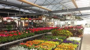 bennett farms market and garden center in hebron md photo bennett farms