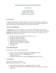 Business Analyst Resume Objective Sample Excellent Business System Analyst Resume Example Images Entry 22