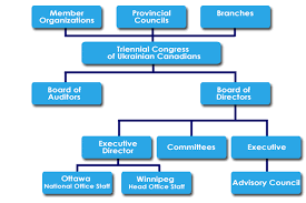 Structure Of Us Congress Keyword Data Related Structure Of