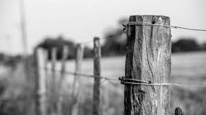 Barbed Wire Fences Were An Early DIY Telephone Network