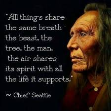 a masters words of wisdom chief seattle seattle and native  a masters words of wisdom chief seattlenative