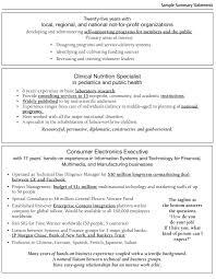 sample resume summary statements summary sample resume