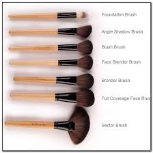 names of diffe types makeup brushes beauty and care