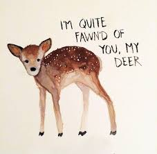 Beautiful Deer Quotes Best of Beautiful Deer Quotes Quotes Design Ideas