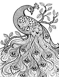 Owl Adult Coloring Pages Vintage Advanced Coloring Books For ...
