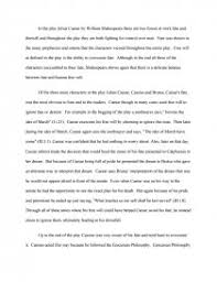 fate vs will julius caesar college essays zoom zoom zoom