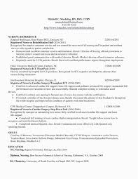 Nursing Student Resume Template Word Examples Rn Resume Template