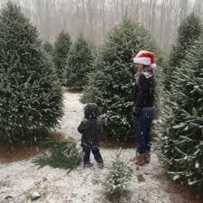 Photo of Anne Ellen Christmas Tree Farm - Manalapan, NJ, United States. My