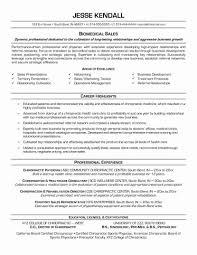 Hybrid Resume Template Combination Samples Sample Best Of 15