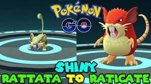 Evolving SHINY RATTATA TO SHINY RATICATE IN POKEMON GO - YouTube