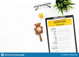 Mock Application Form Application Form For Adopt Child On White Background Top