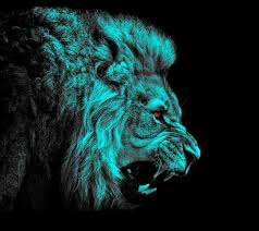 Lion Wallpaper For Hd 1080p Src Lion ...