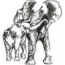 Sketched Animals