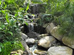 Small Picture 48 best waterfall ideas images on Pinterest Garden ideas