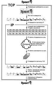 Реферат Основные протоколы сети Интернет Интернет как единая