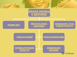 Реферат на тему личная гигиена тело кожа волосы ногти реферат на тему личная гигиена тело кожа волосы ногти