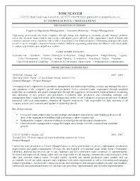 Resume Mission Statement Mesmerizing Management Resume Objective Statement Nmdnconference Example