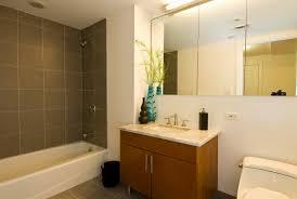 Wonderful Small Bathroom Makeovers Small Bathroom Makeover Must - Bathroom makeover