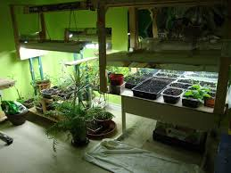 superb exterior house lights 4. Image Of: Best Light For Growing Plants Indoors Superb Exterior House Lights 4 T