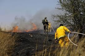 Risultati immagini per burning fields israel