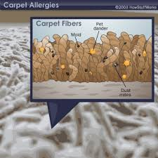 ugh who wants to think about all these allergens hanging out in your carpet