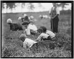 Progressive Era Child Labor