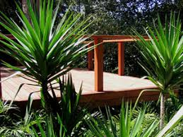 Small Picture Harmony in Landscape Design Avalon Palm Beach Bayview Garden