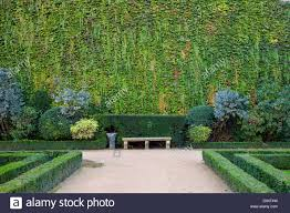 park bench along ivy covered wall in the garden of hotel