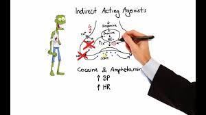 Adrenergic Receptors Chart Pharmacology Adrenergic Receptors Agonists Made Easy