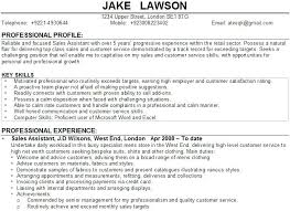 Professional Profile In Resumes Examples Of Profiles For Resumes Profile On Resume Resume Profile