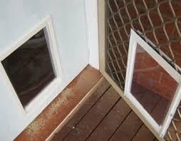 dog doors for screens adelaide pet doors